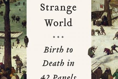 Short Life in a Strange World – Birth to Death in 42 Panels by Toby Ferris